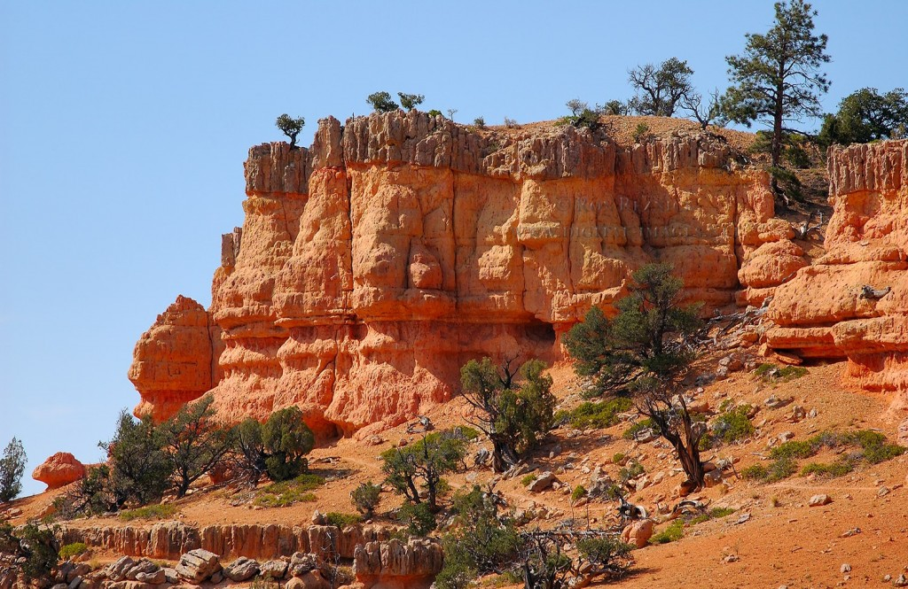 Red Canyon Trail Utah
