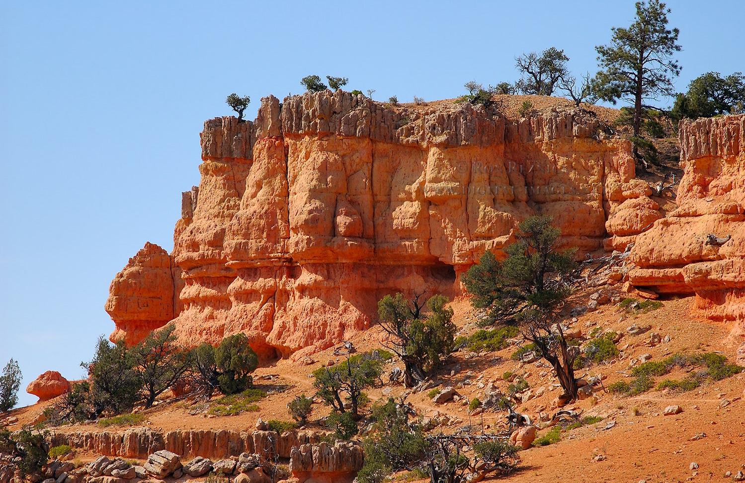 Reds Canyon Trail Green River Utah